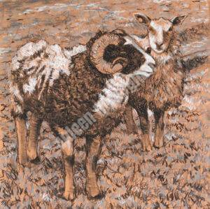 Ram and Ewe, Charcoal and Chalk on Paper