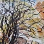 Hawthorn, East Galway, mixed media on paper, 32cm x 40cm, 2004
