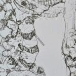 Spine (detail), Ink on paper,46cm x 30cm, 2016