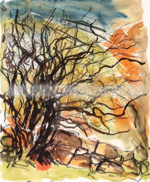 Fairy Tree Connemara - Aideen Monaghan