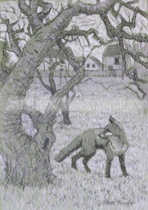 Apple Tree and Fox, Giclée Print on Fine Art Paper , 38 x 53cm